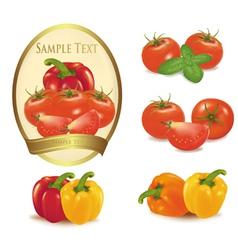 Gold label with vegetables vector