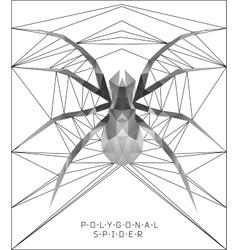 Polygonal spider Geometric vector image