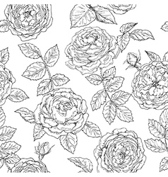 Doodle rose seamless vector