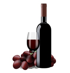 Bottle glass of wine and grapes isolated vector