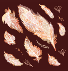 fall feathers set vector image vector image