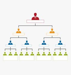 Hierarchy in company organization chart tree vector