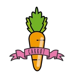 Carrot icon organic food design graphic vector