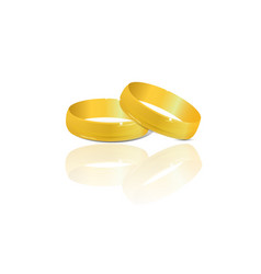 Couple of gold wedding rings vector