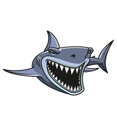 Danger shark attacks vector image