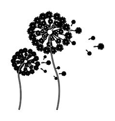 Black silhouette dandelion with stem and pistil vector