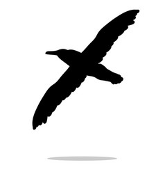 gull bird black silhouette anima vector image