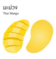 half and slice thai mango vector image