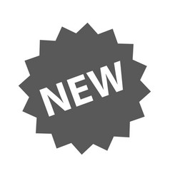 new sign icon simple vector image