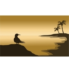 Silhouette of one bird in beach vector