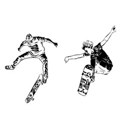 skateboarders on white background extreme theme vector image