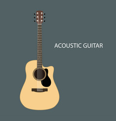 acoustic guitars isolated vector image