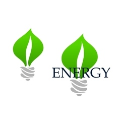 Light bulb abstract icon with green leaves vector image