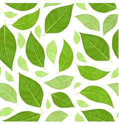 green leaves seamless pattern background vector image