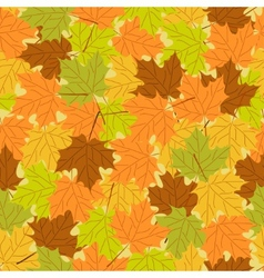 Maple leaf seamless pattern seamless background vector image