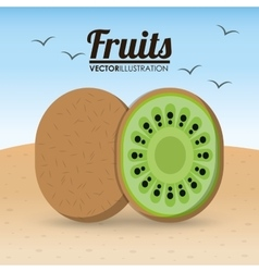Kiwi fruit and summer concept vector