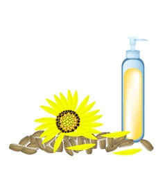 Sunflower oil and yellow sunflower with seed vector