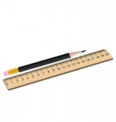 pencil and ruler vector image vector image