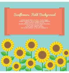 Sunflowers field background vector