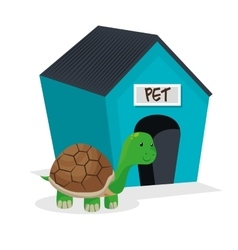 Turtle pet shop isolated icon vector