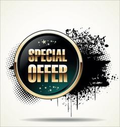 Special offer grunge banner vector image