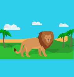 funny lion in savanna vector image vector image