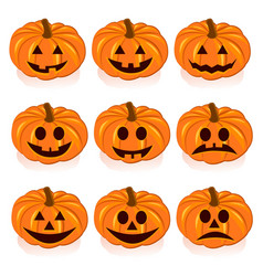 Ripe pumpkins on white background vector