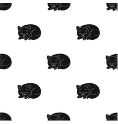 Sleeping cat icon in black style isolated on white vector