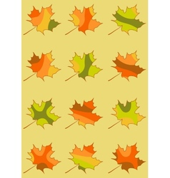 Set of maple leaves isolated mosaic maple leaf in vector