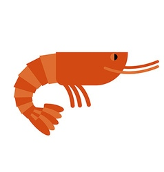 Shrimp Marine cancroid Boiled shrimp delicacy vector image