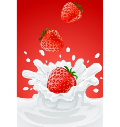 strawberry's vector image vector image