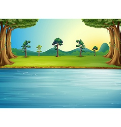 A forest with a river vector image