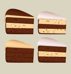 Pieces of cake vector