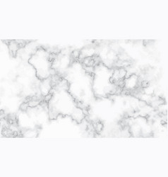 seamless marble pattern texture abstract vector image vector image