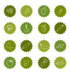 set of hand-painted vegetables vector image