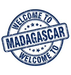 Welcome to madagascar vector