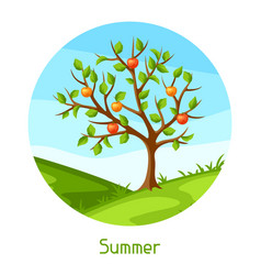summer landscape with green tree and apples vector image