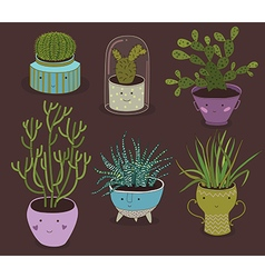 Cactus and succulent plants growing in cute pots vector