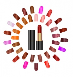 palette of lipstick vector image vector image