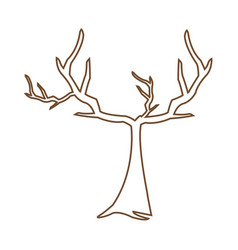 tree withered branching free spirit rustic vector image