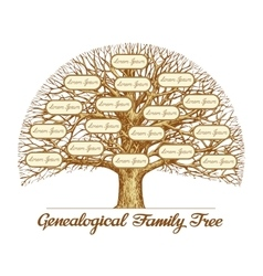 Vintage genealogical family tree hand drawn vector