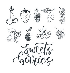 Sweet berries hand drawn isolated berry set on vector