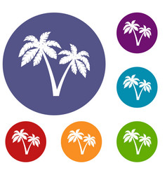 two palms icons set vector image