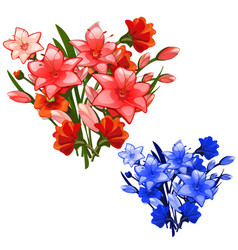 two bouquet of red and blue lilies vector image