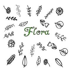 Flora vector