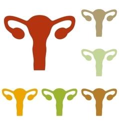 Human body anatomy uterus sign vector