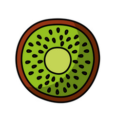 Kiwi fresh fruit drawing icon vector