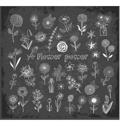 set of doodle sketch flowers on blackboard vector image vector image