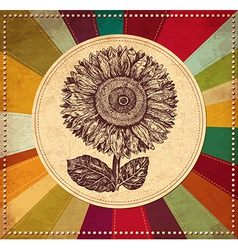 Sunflower vintage background vector image