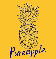 Pineapple hand drawn sketch grunge outline popart vector
